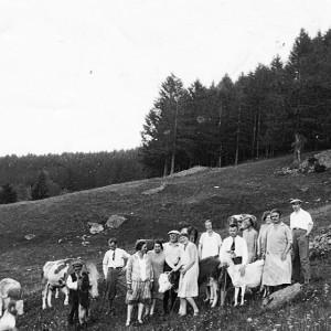 """Gäste und Vieh """"Grünen Baum"""" - 1928"""